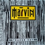 Marvin-A_cropped